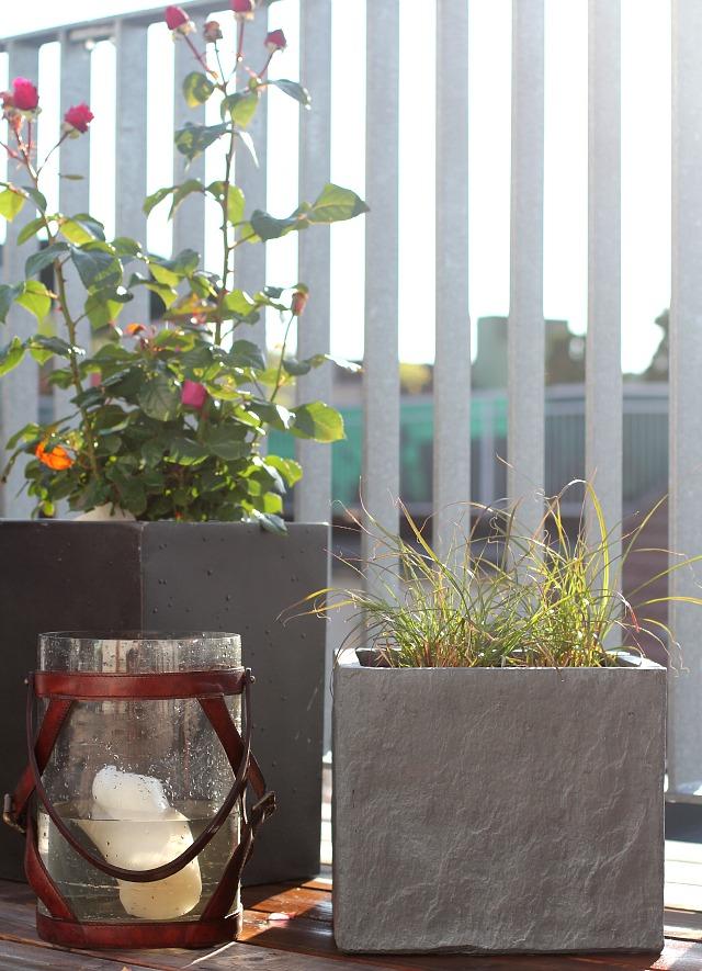 outdoor living rooftop deck gardening