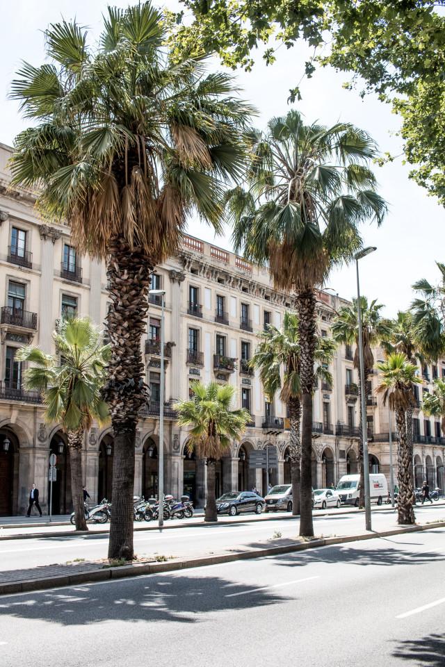 Barcelona Travel Diary   Bikinis & Passports